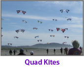 ppk-home-page-quad-kites.png