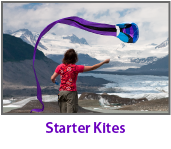 Starter Kites